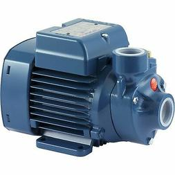 Pedrollo Booster Water Pump - 634 GPH, 1/2 HP, 115 Volts, Mo