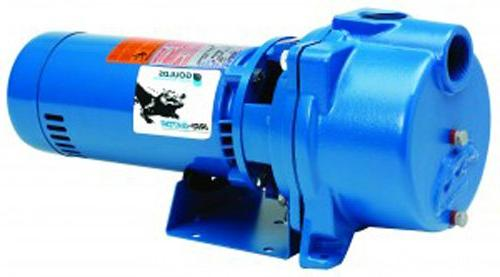 GOULDS Self-Priming Pump, hp, Blue