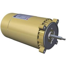 Hayward SPX1607Z1M 1Hp Threaded Shaft Max Rated Gold Motor